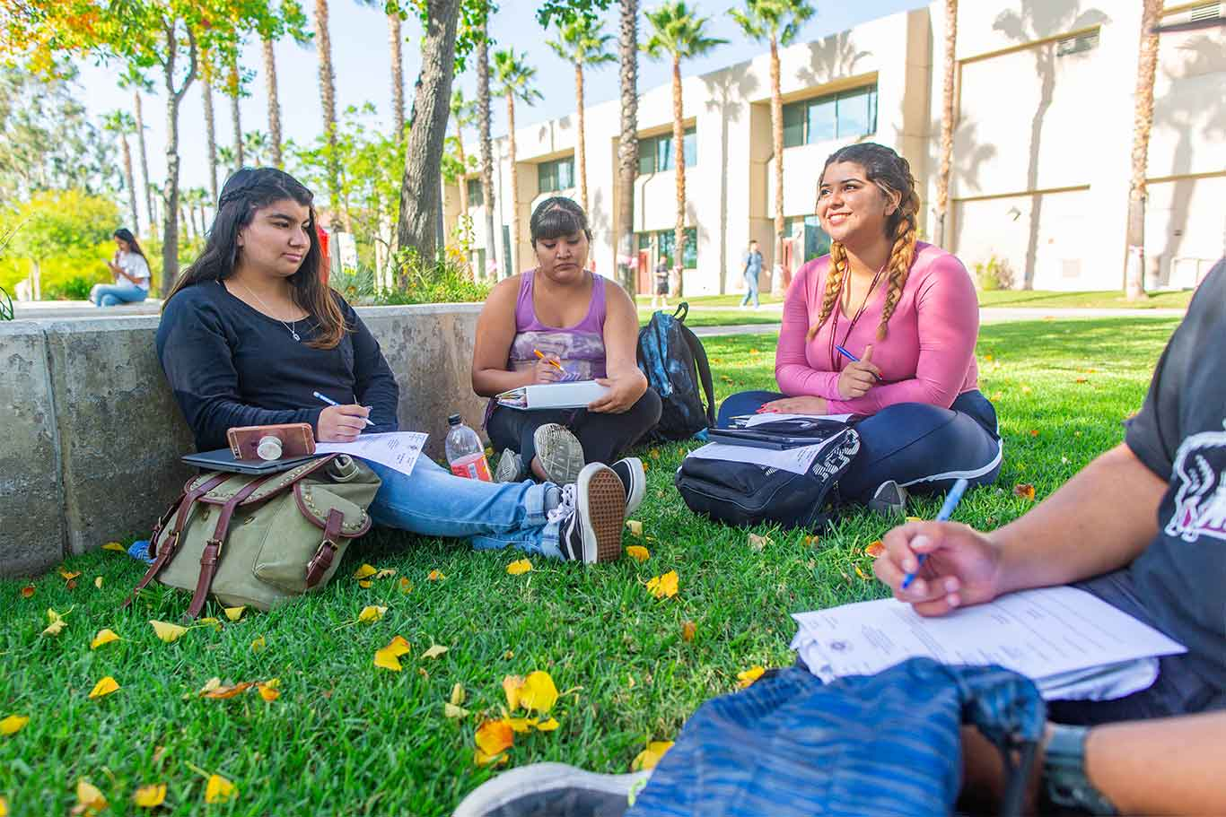 Students meeting and talking on the lawn of campus